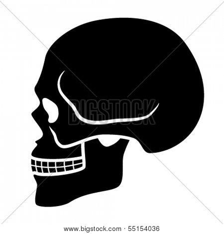 vector human skull symbol - side view