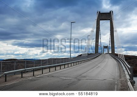 Automobile Cable-stayed Bridge With Asphalt Road