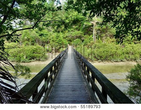 Bridge Leading Into A Forest