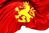Athnic Macedonian Lion Flag