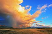 Summer rain. The beautiful huge cumulonimbus cloud is shined with the sunset. Rain streams are shone