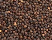 foto of pimiento  - close up of a background of black pepper - JPG
