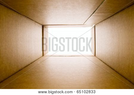 Opened Blank Paper Box