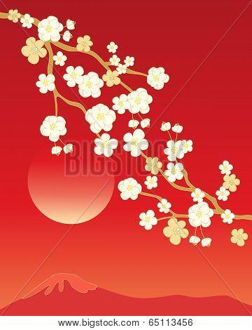 China Blossom Background