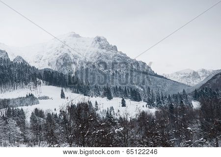 Winter landscape. Mountain village in the Bran,Romanian Carpathians