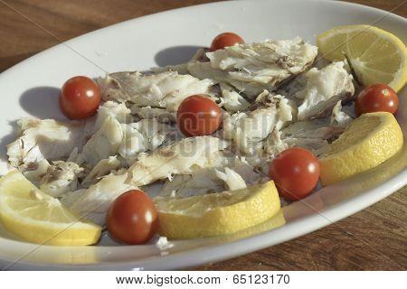 Umbra Fish