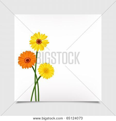 Vector card with gerbera flowers. Eps-10.