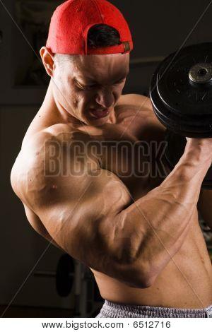 Bodybuilder Having Gym Training