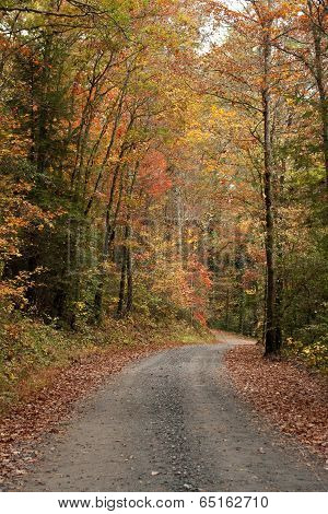 Fall Gravel Road