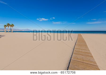 Alicante San Juan beach with palms trees of Mediterranean sea at Spain valencian Community