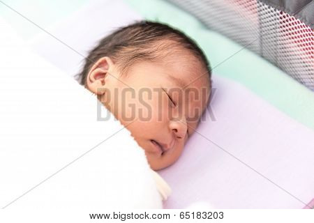 New Born Male Thai Baby In Various Sleeping Action