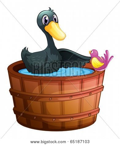 Illustration of a bird watching the duck above the pail on a white background