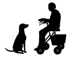 foto of rollator  - Detailed and accurate illustration of old woman with dog - JPG