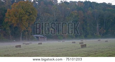 Hay Bales in Fog