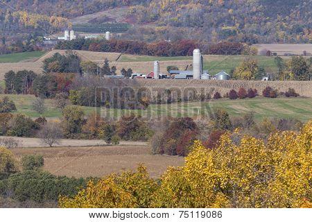 Rural Autumn Scene