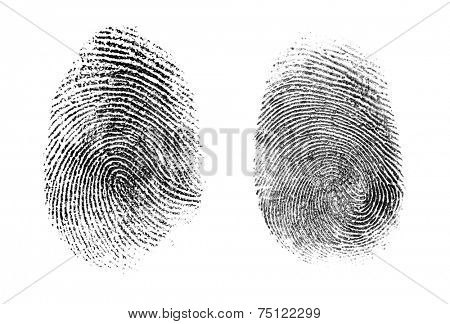 fingerprint or thumbprint set isolated on white