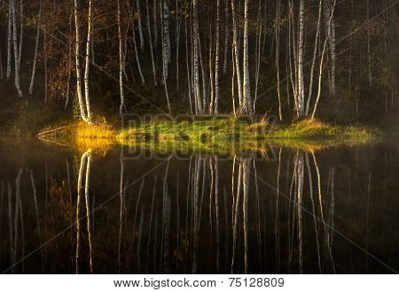 Water reflections of autumn trees