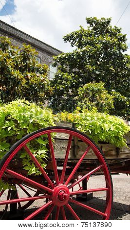 Green Plants Over Red Wagon Wheel