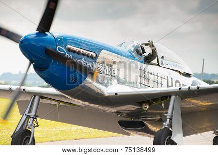 P51 Mustang Vintage Aircraft