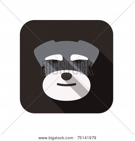 Schnauzer animal flat icon