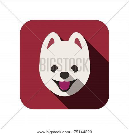 Pomeranian animal flat icon