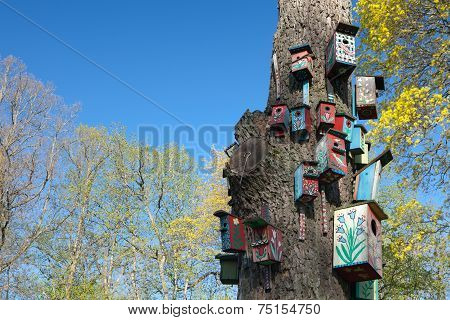 Colorful Nesting-boxes