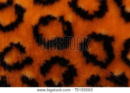 Background Leopard Color