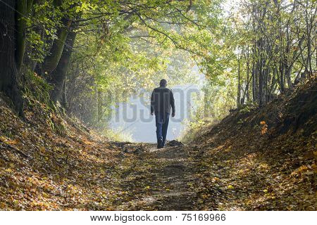 A man walking along a forest path in autumn