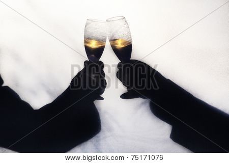 Two gay men toasting their wedding with champagne.  Silhoette taken outdoors behind a screen, with abstract shapes of trees and foliage blurred in background.