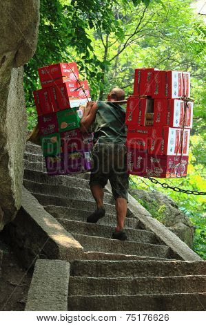 worker is carrying boxes with beverages