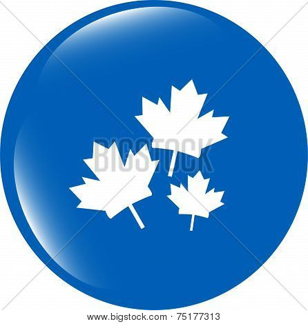Maple Leaf Icon On Web Button Isolated On White Background