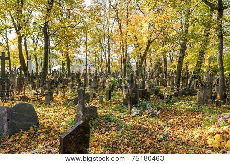 Autumn In Old Cemetery