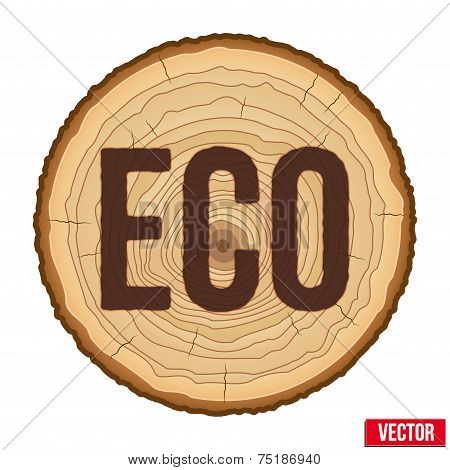 Cross section of tree trunk with scorched inscription ECO. Vector.