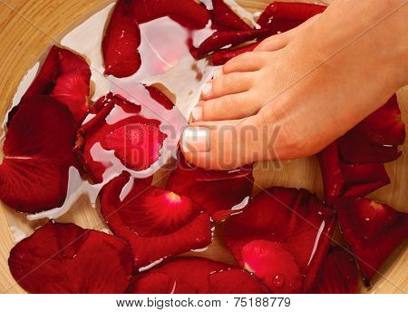 Feet Spa. Pedicure Concept. Beautiful healthy woman's feet massage. Female legs in water with rose petals