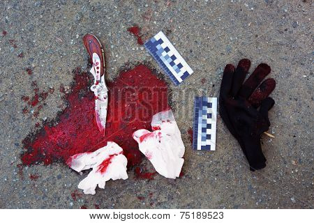 Bloody knife and evidence dragged along outdoors