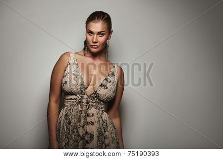Voluptuous Female Model Posing A Beautiful Dress