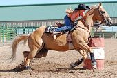 stock photo of barrel racing  - Young cowgirl riding a palomino horse around a barrel in a rodeo.