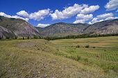foto of suny  - Mountain Meadow after haymaking on a suny day - JPG