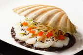 stock photo of scallop shell  - scallops presented on a scallop shell - JPG