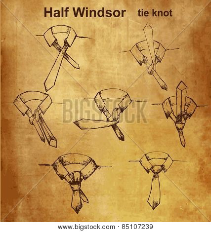 Vector tie and knot vintage instruction, Half Windsor tie knot