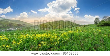 Valley With Yellow Flowers In Mountains At Sunrise
