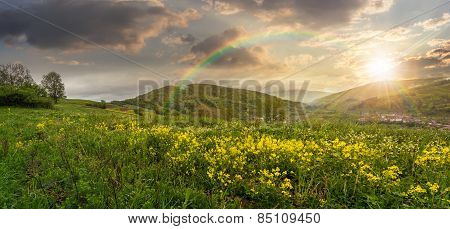 Valley With Yellow Flowers In Mountains At Sunset