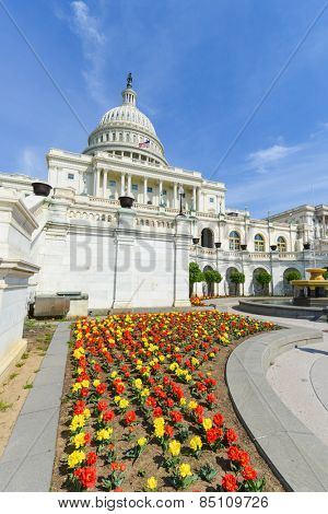 Washington DC in Spring - United States Capitol building