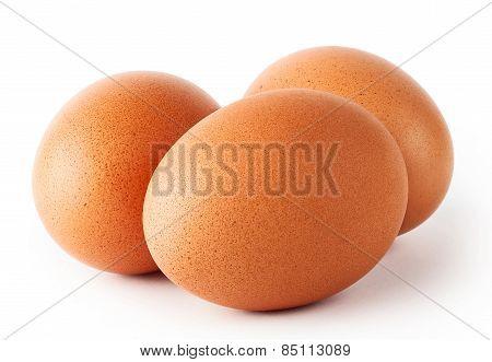 Three fresh chicken eggs