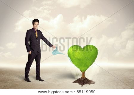 Business man watering heart shaped green tree concept on background