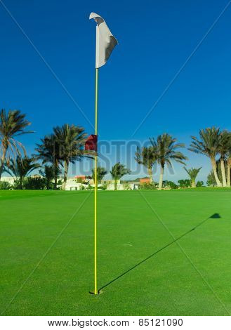Golf Flag Waving