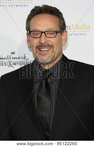 LOS ANGELES - JAN 8: Rob Steinberg at the TCA Winter 2015 Event For Hallmark Channel and Hallmark Movies & Mysteries at Tournament House on January 8, 2015 in Pasadena, CA