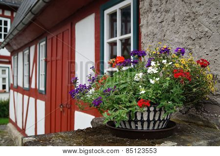 Flowers In A Pot On A Background Of The House