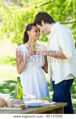 Cute couple toasting in the park on a sunny day
