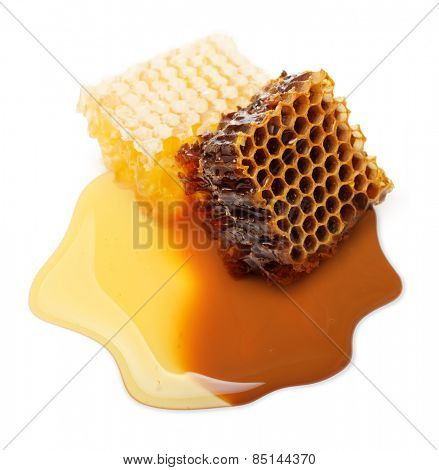 Slice honey comb on white background.